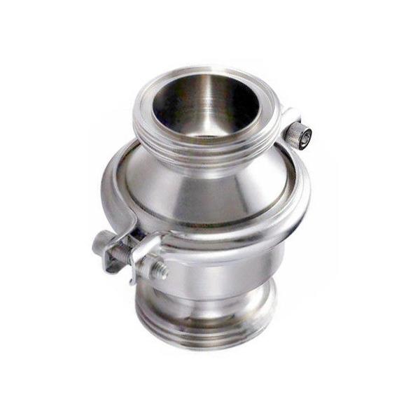 Stainless Steel SS304 Hygienic Sanitary Male Threaded Non-Return Check Valve